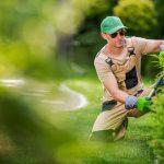 Zo zorg je voor een natuurlijke tuin