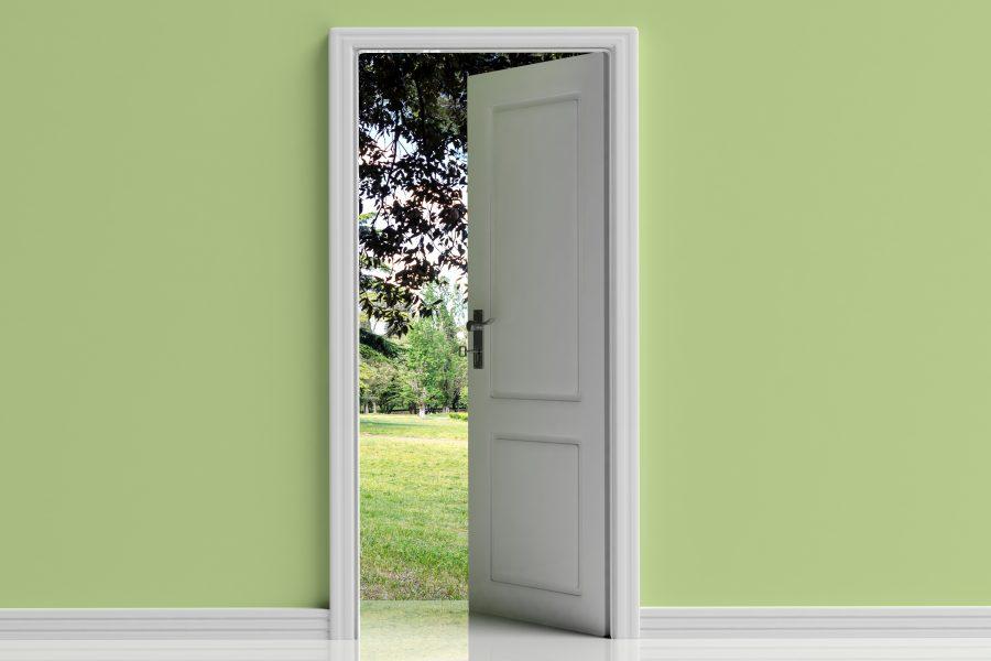 Nieuwe deuren nodig? Hier een paar opties
